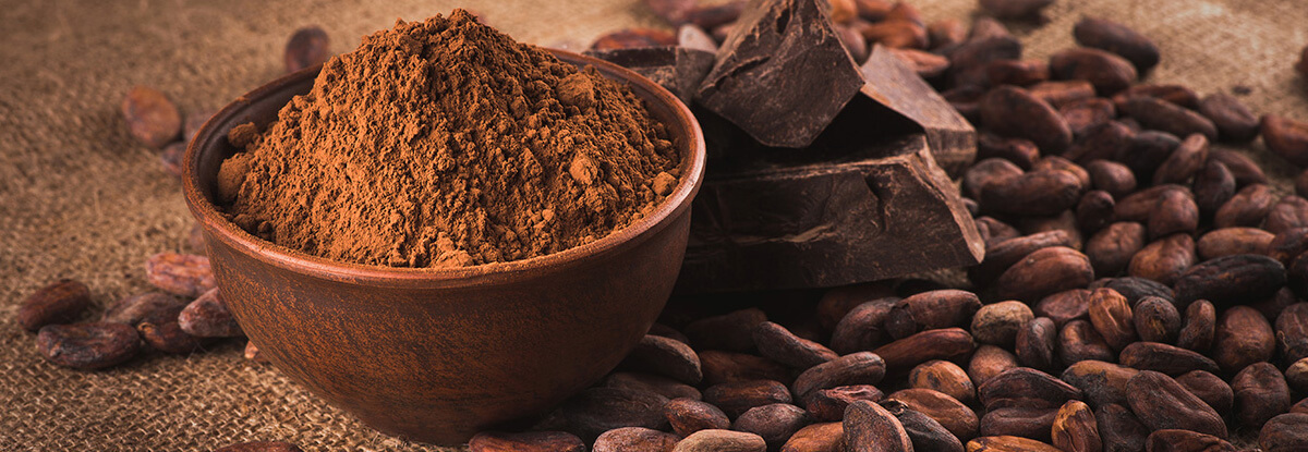 products cocoa powder